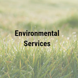 Environmental Services Group Inc. (ESG)