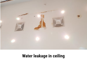 Areas with water leakage are prone to mold growth