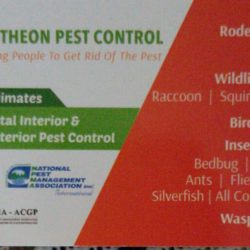 Pantheon Pest Control